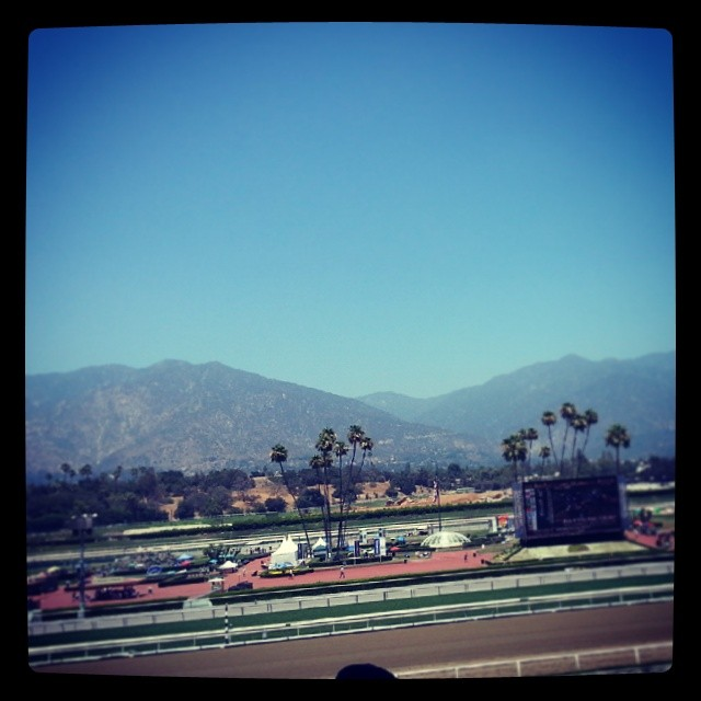 At the race tracks for the first time!